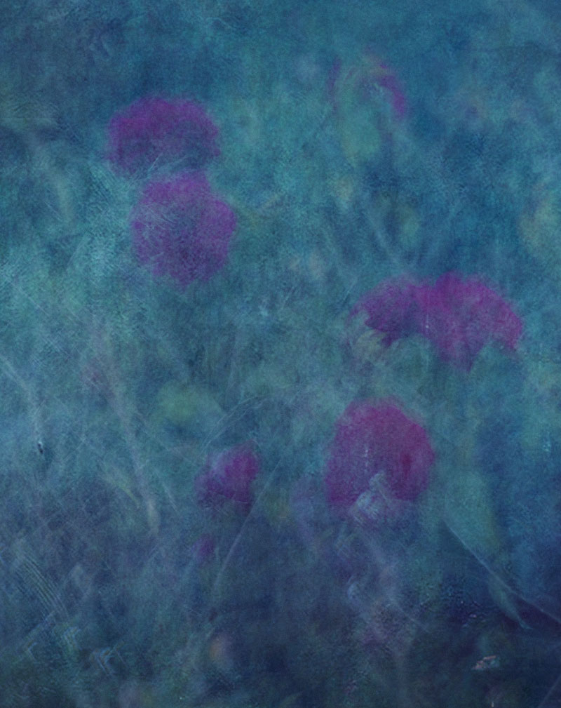 FASHION---Vanishing-Flowers3