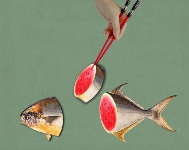 fishfish_2